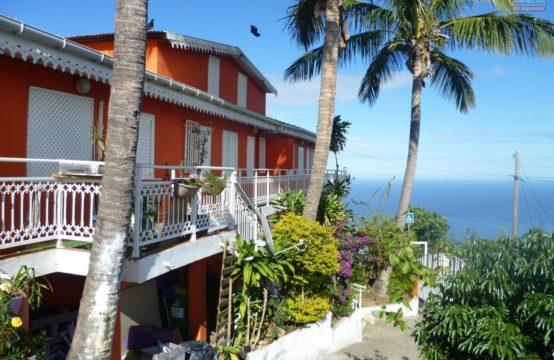 En-location-un-appartement-avec-vue-mer-montagne-bois-de-nèfles-trois-bassins-île-de-la-Réunion-par-Ofim