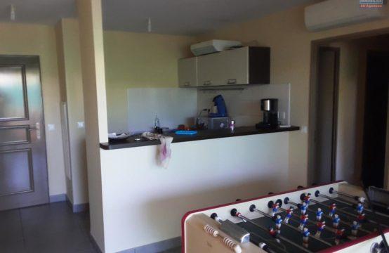 Location-Appartement-T2-proche-plage-écoles-commerces-jardin-ofim-saint-gilles-les-bains-reunion